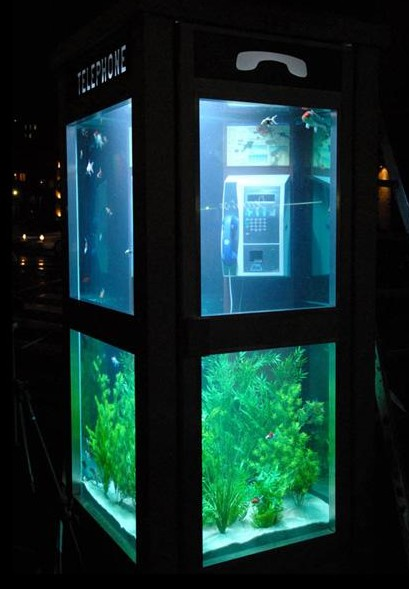 Gizmodo UK  : The Aquarium Phone Booth   (Thanks Travors)
