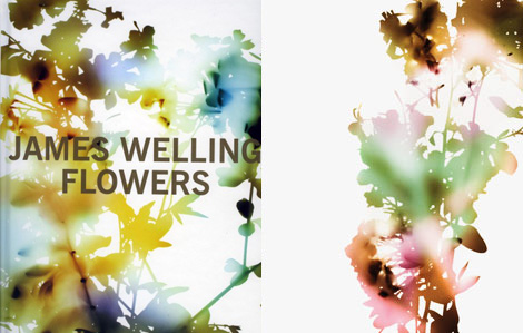 """…the colorful, Rorschach Test-like photograms of flowers by the esteemed Los Angeles-based conceptual photographer, James Welling. Welling placed the blossoms of a common southern California plant on sheets of 8x10 film and exposed them to light. The negatives were then projected onto special photo paper through a color mural enlarger and color filters, to produce the dramatic, spectral, almost sun- or moon-dappled images reproduced here. See more about the book here or see some of the prints here."" (via  Oh Joy!: james welling's flowers )"