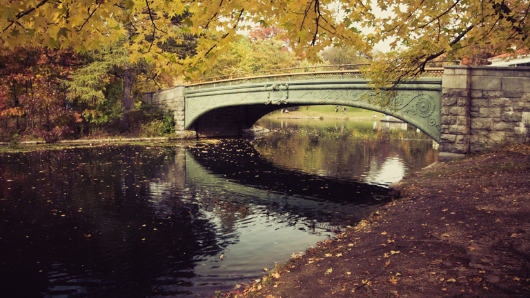This is why fall is my favorite season.  It reminds me of when I was a little kid and my parents would take me to feed the ducks at a park on Long Island.  There was a bridge just like this there.    ckck :Prospect Park, Brooklyn. Three weekends ago.
