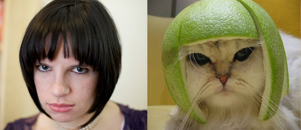 GPOYW    Marco  took a photo of my angry face and it reminded me of this.   (note: I found the picture by searching for 'cat with melon head'.  It was the first hit.  I love the internet.)