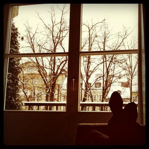 Just hours ago,watching the snow in Deutschland. (Taken with instagram)