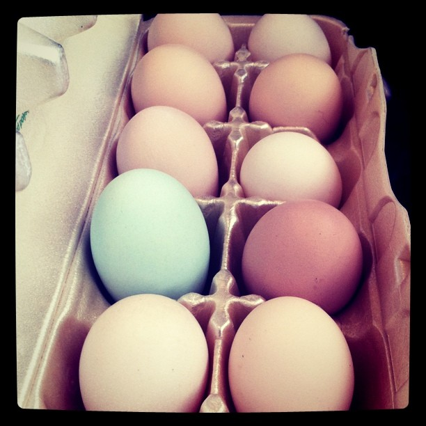 Beautiful farm fresh eggs. I love the teal one. (Taken with instagram)