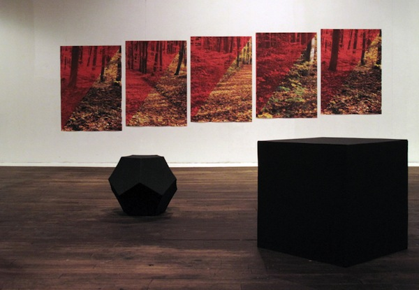 installation view IV  2010