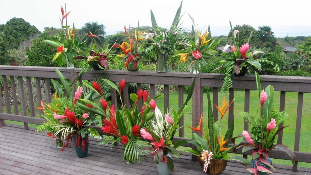 Teaching Tropical Arrangements with friends at Lono Flower Farm, Hana, 2007
