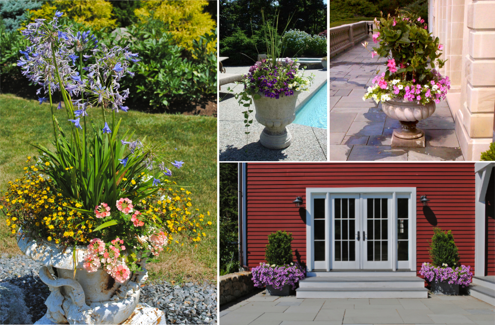 Planters are a great way to add color & fragrance to a garden or patio.