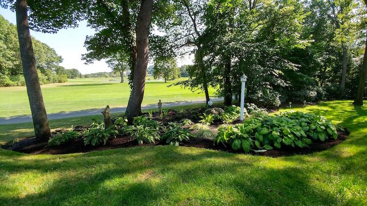 A Shade Garden & A Sunny Garden — River Birch Design