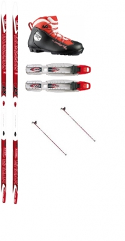 Adult skis.jpg