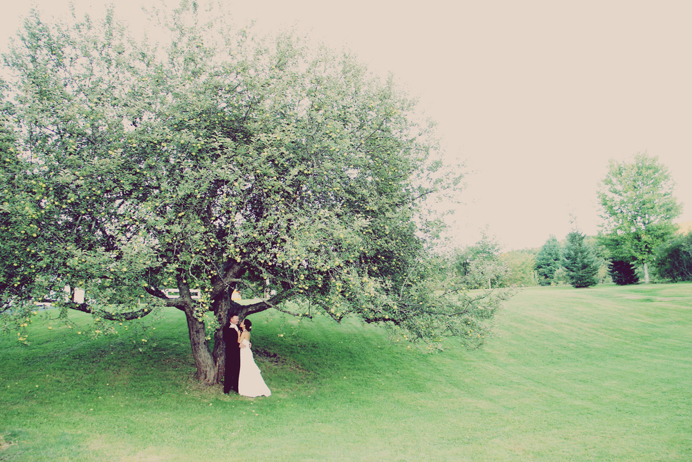 birke photography