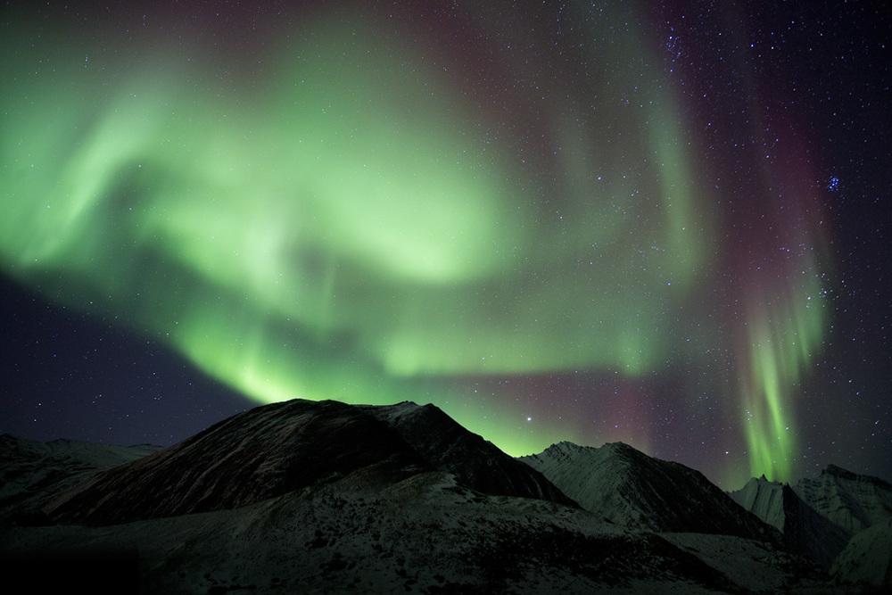 aurora_00506519w10.jpg