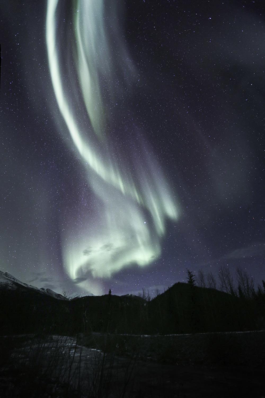 aurora_borealis_C61A6299b.jpg