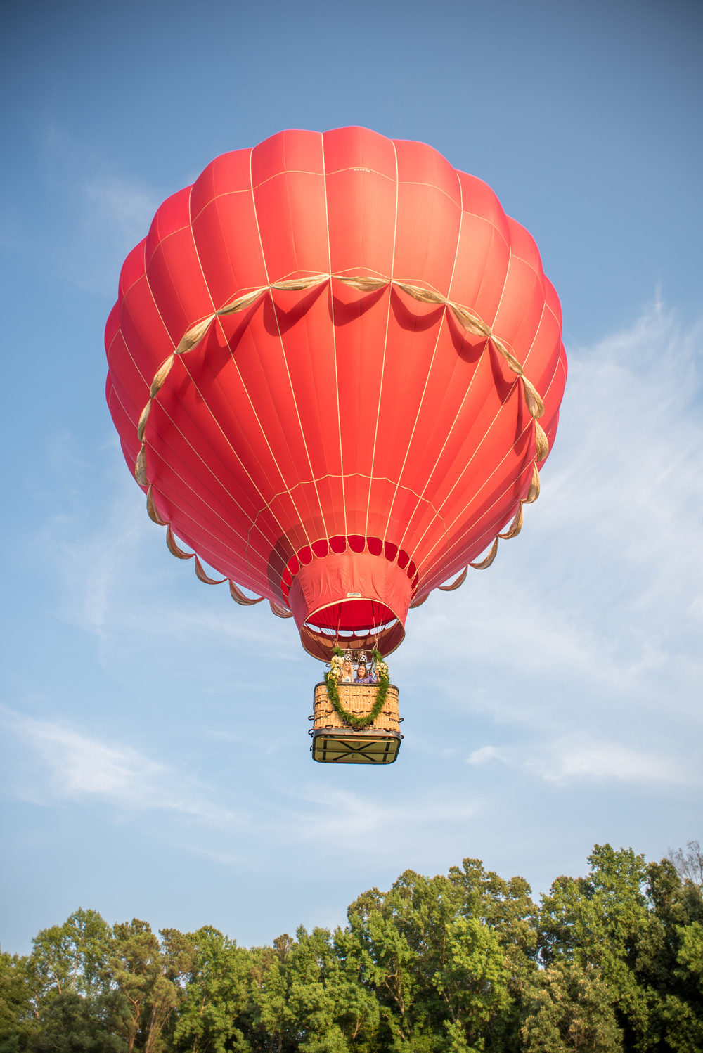 mikkelpaige-se_floral-hot_air_balloon-207.jpg