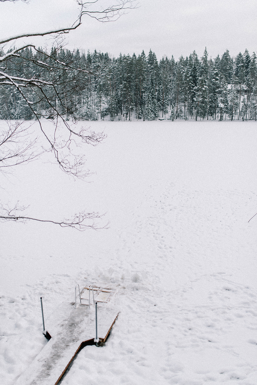 A winter gathering in Nuuksio, Hawkhill Nature, Hey Look, Tuulia Talvio (10).jpg