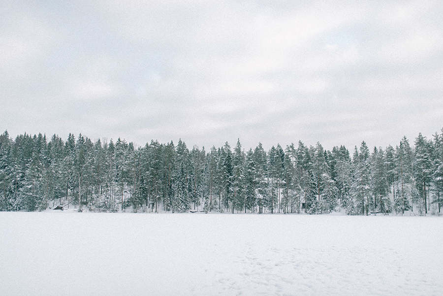 A winter gathering in Nuuksio, Hawkhill Nature, Hey Look, Tuulia Talvio (12).jpg