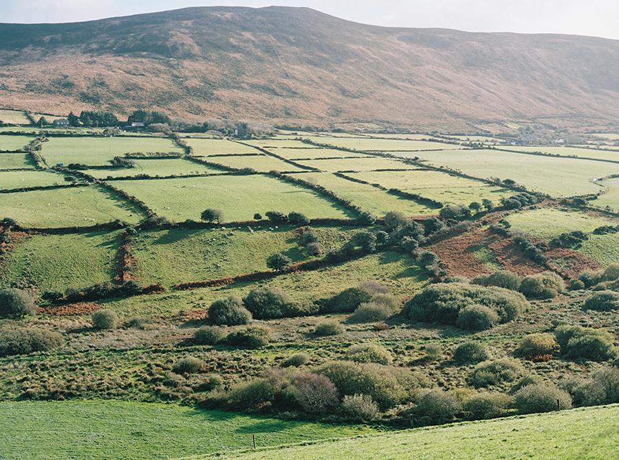 Lifestyle Branding Shoot For Fiadh, Dingle Ireland (5).jpg