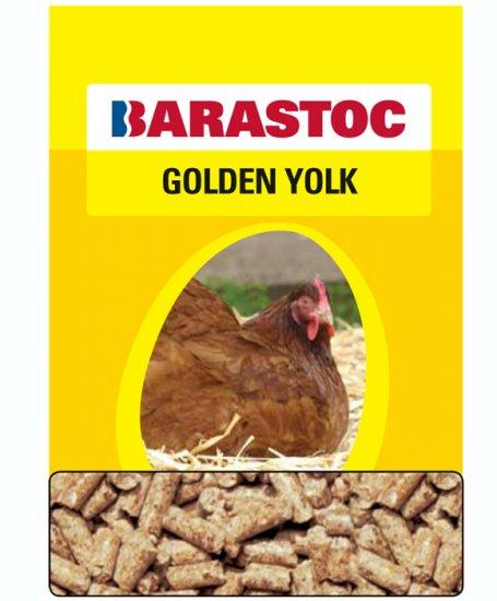 golden yolk.jpg