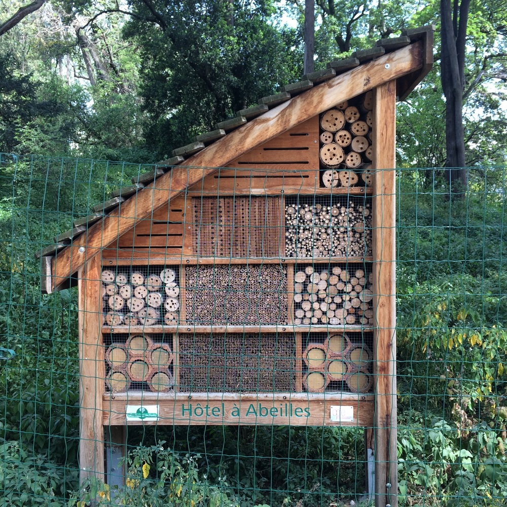 A hotel for Bee's!
