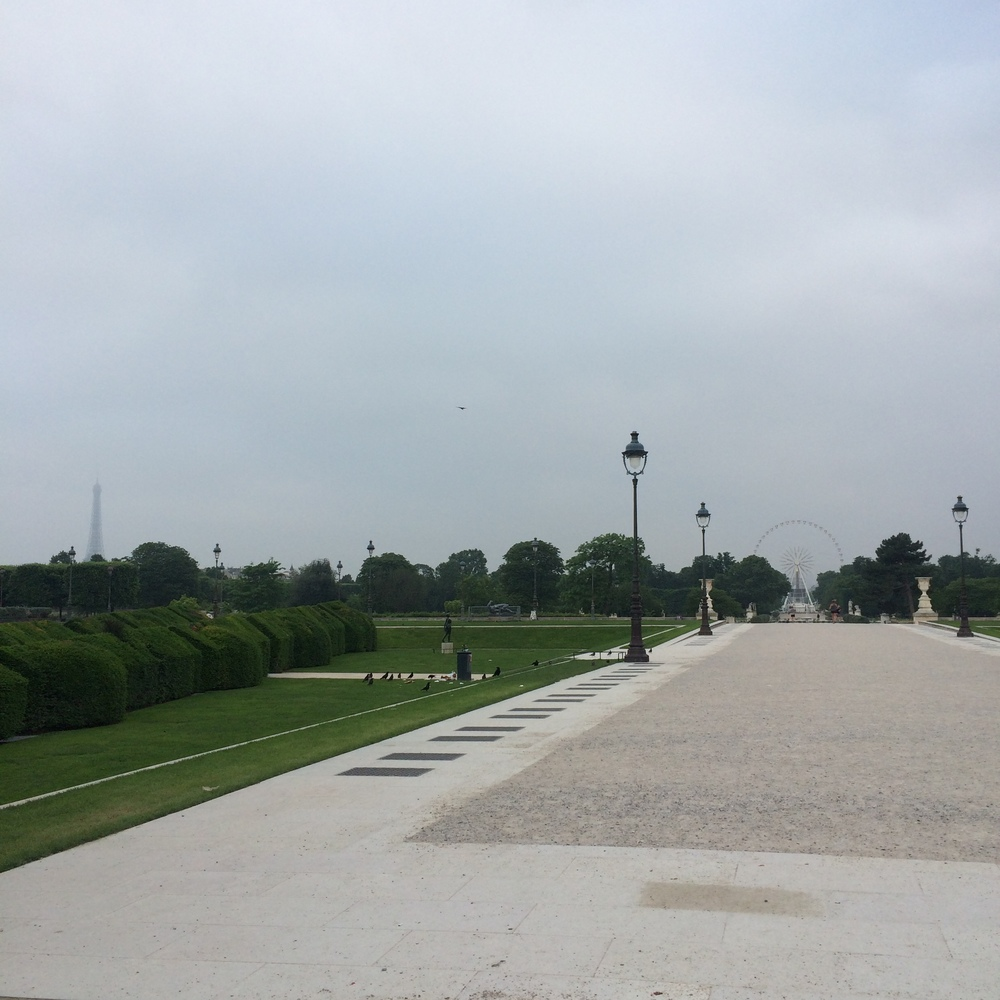 Morning Jog in Jardin des Tuileries (I ran to the Ferris Wheel in the distance and back to Les Halles)