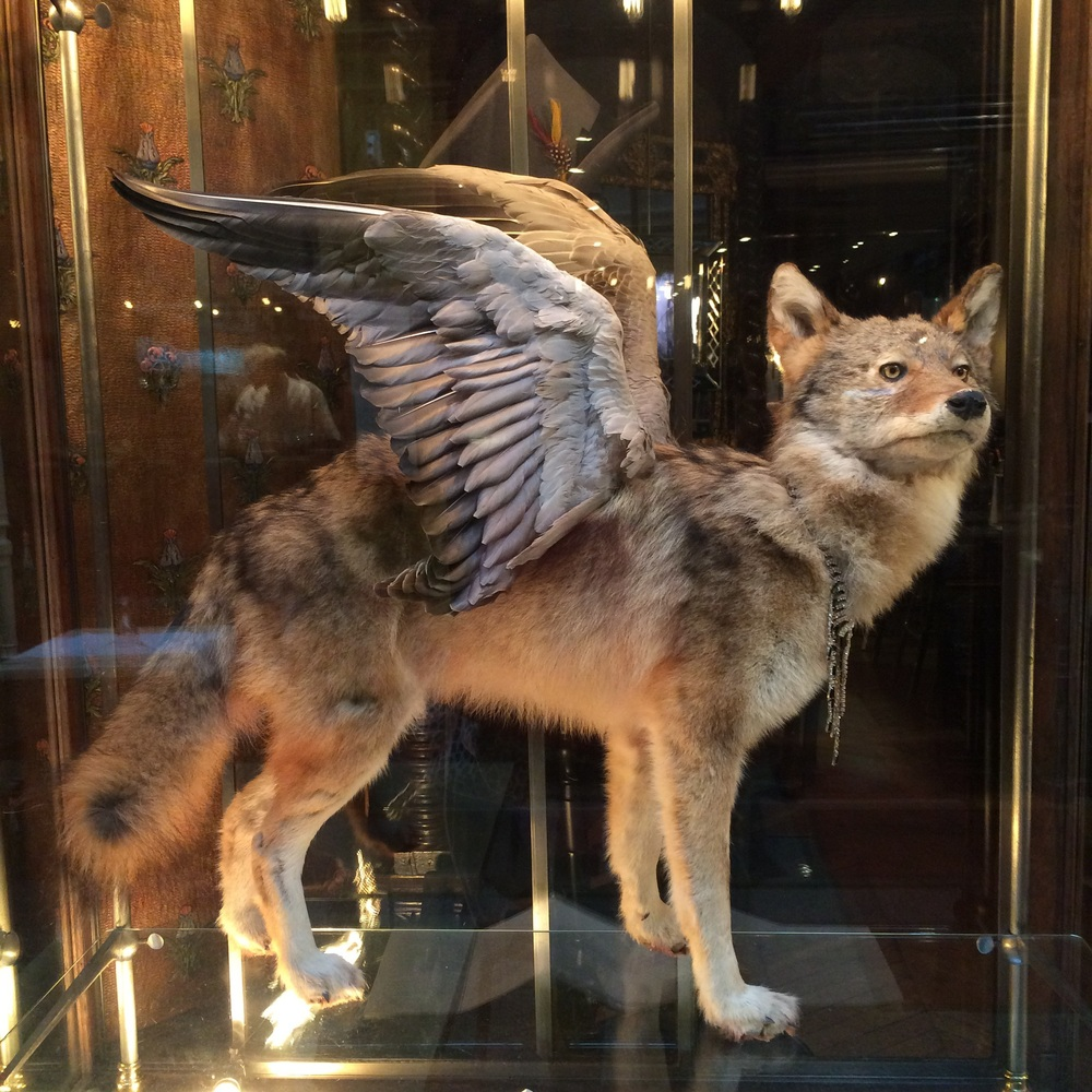 As seen in the 2nd....I think they like their taxidermy here...