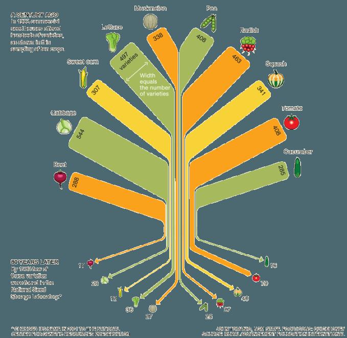 Food Variety Tree
