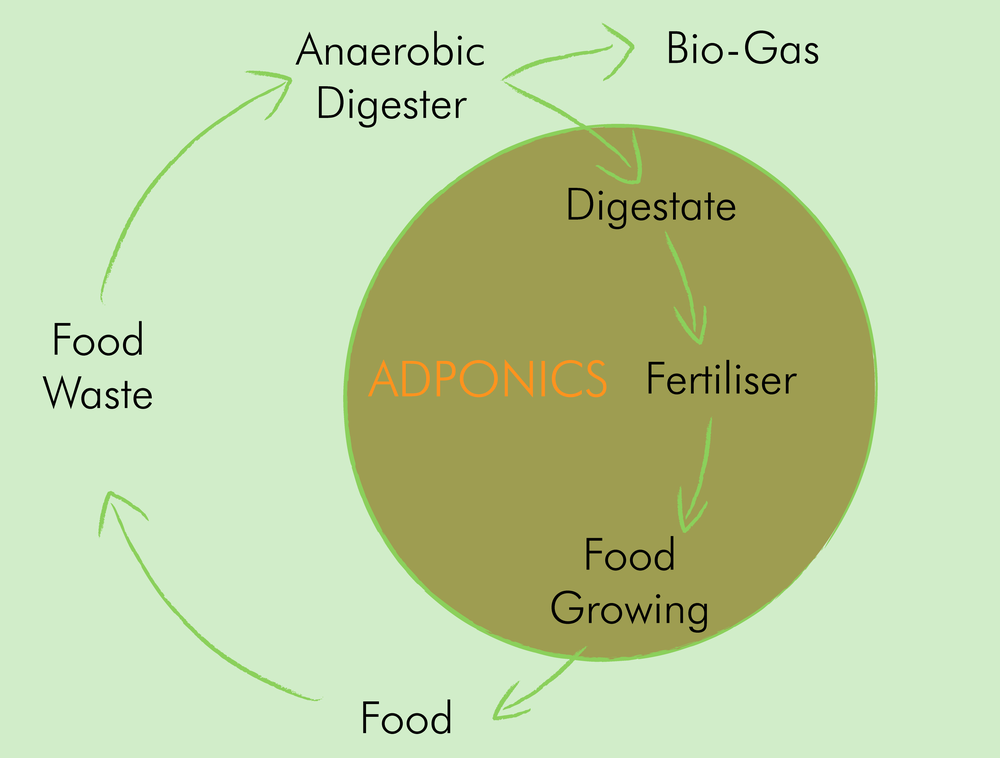 ADPonics