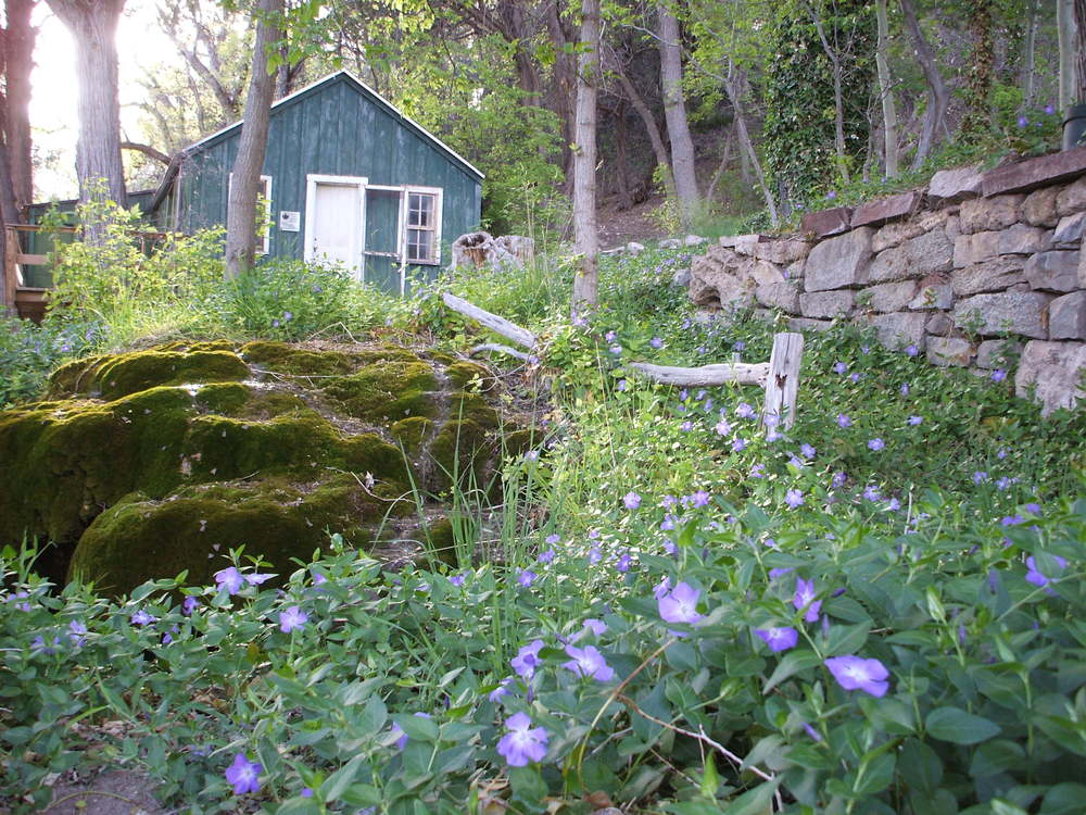 Spring-fed gardens and historic cabin at Carlito Springs
