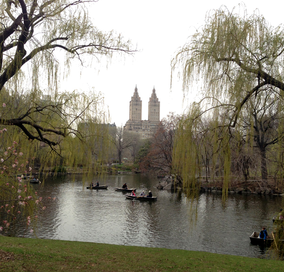 Cool spring day with row boats in Central Park. So many weeping willows.