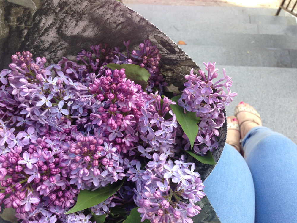 Lilac's from the Atwater Market that I was lucky enough to live so close to!