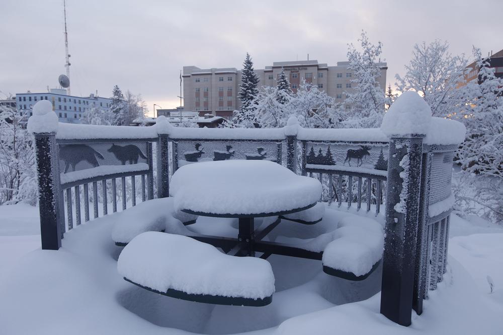 Fairbanks随处可见被白雪完全覆盖的街景(点击放大)