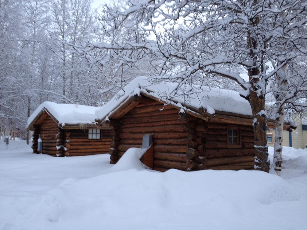 冬天下了雪基本不会化,雪就越堆越厚,非常有圣诞节的感觉~(点击放大)