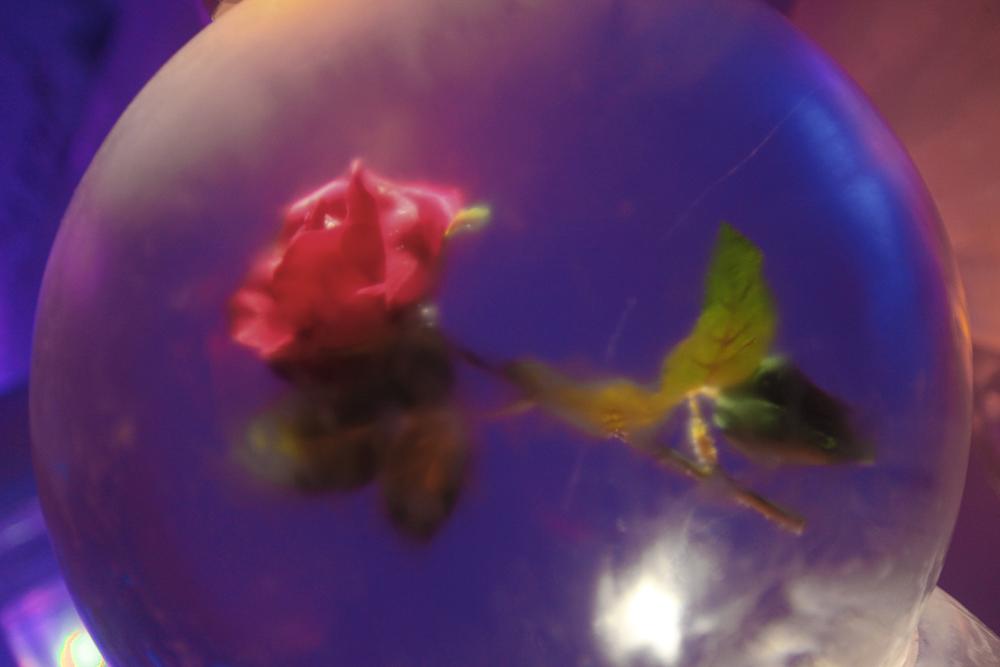 玫瑰花(点击放大)