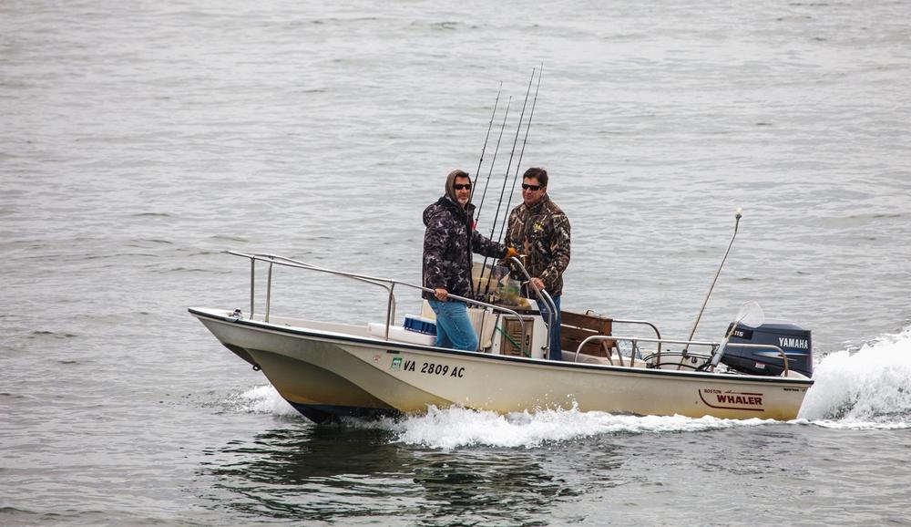 周日出海打渔的人(点击放大)