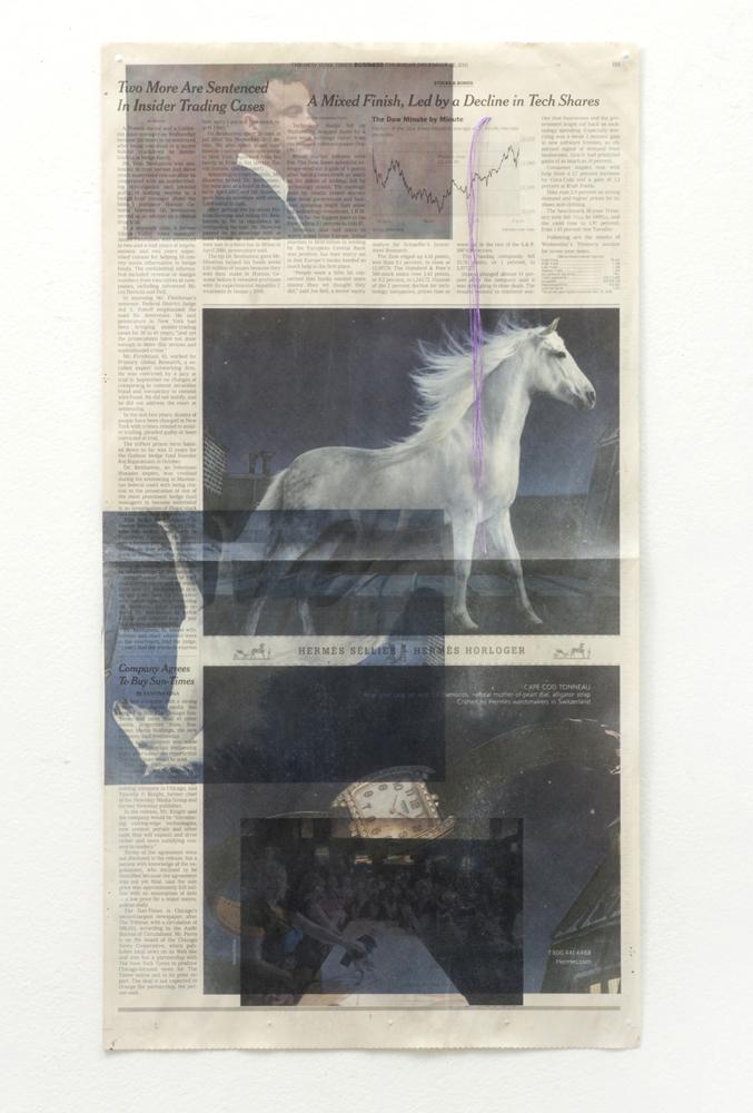 Pistorious Horse, 2014