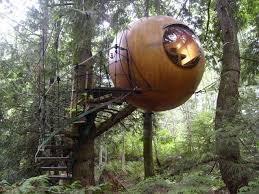 Tree EYE House