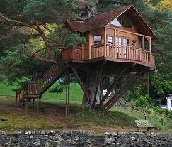 Full Scale Living Tree House
