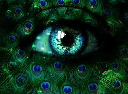 Green Blue Peacock Eyes