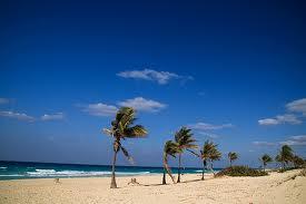 Cream tones in the sand of Havana Beaches.
