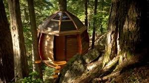 Bent Wood Orb, note the skylight windows open! Tree base floating Hive House