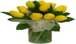 yellow tulips.jpg