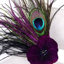 Peacock Purple Feathers....