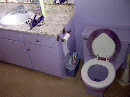 Lavender Bathroom, and toilet cover!