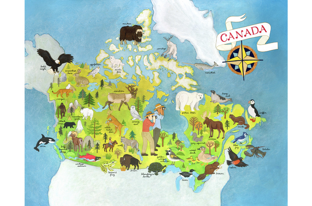 animals_of_canada_map.jpg
