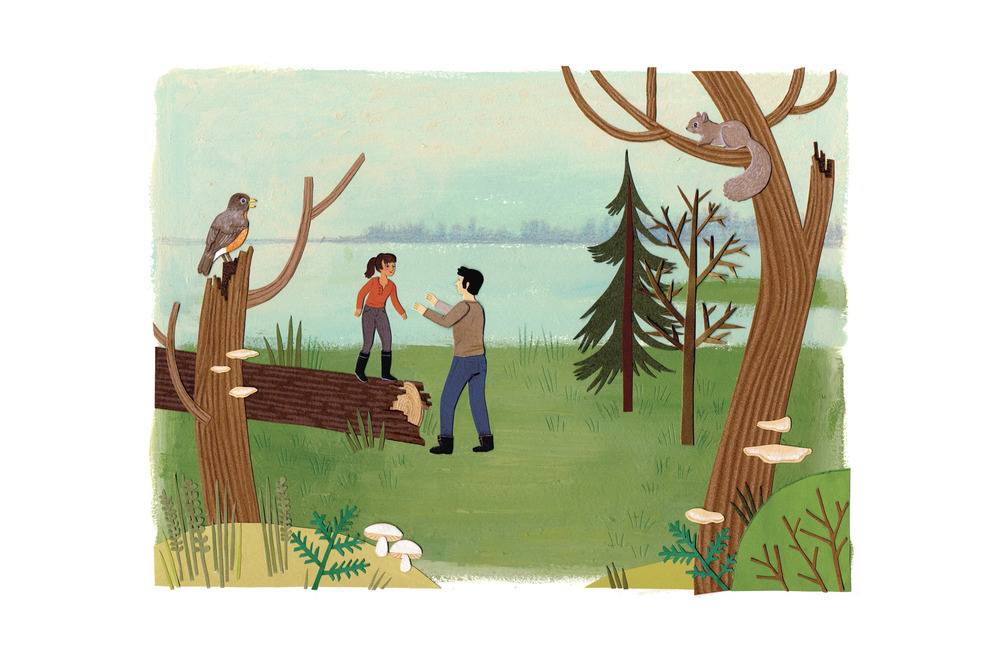 Nature_Canada_thankyou_card_forest_park_illustration.jpg