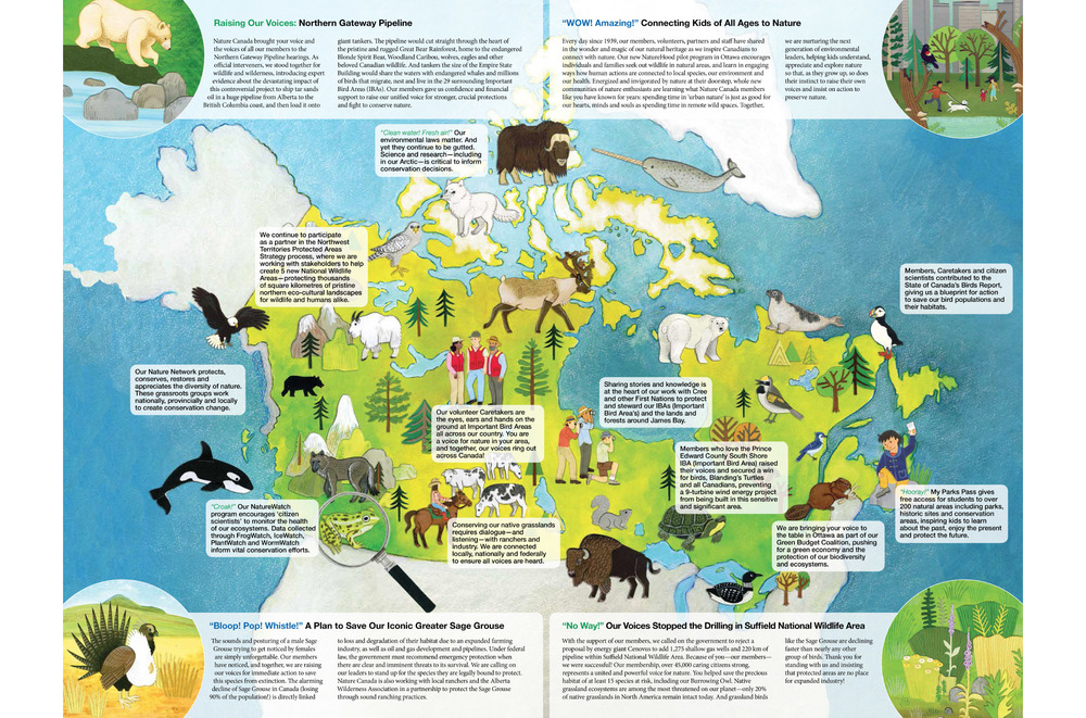 nature_canada_map_illustration_annual_report_2013.jpg