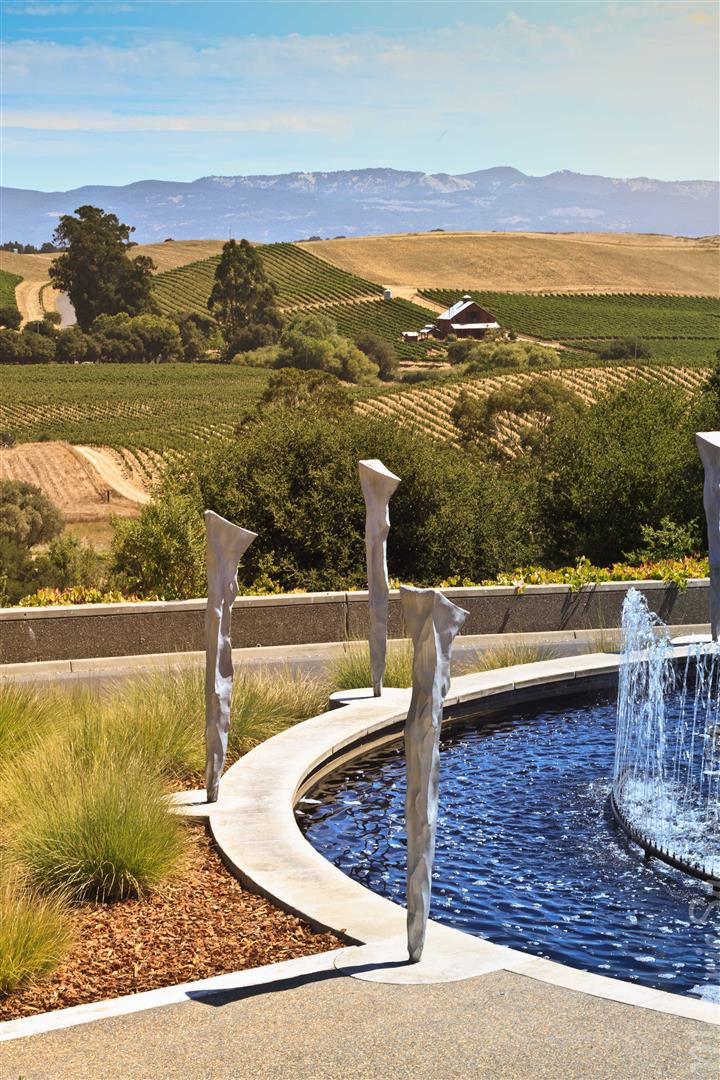 California Winery Artesa (7)