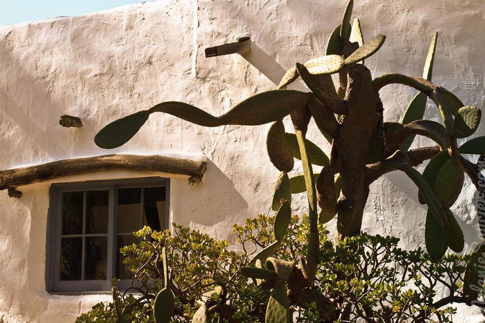 Carrillo_Ranch-34 (Medium).jpg