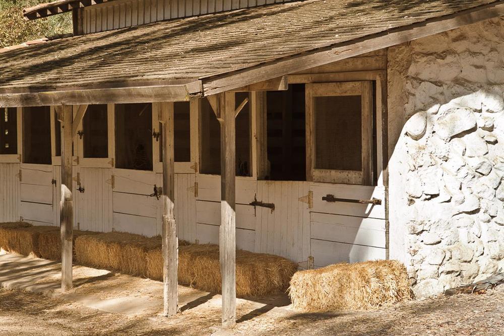 Carrillo_Ranch-39 (Medium).jpg