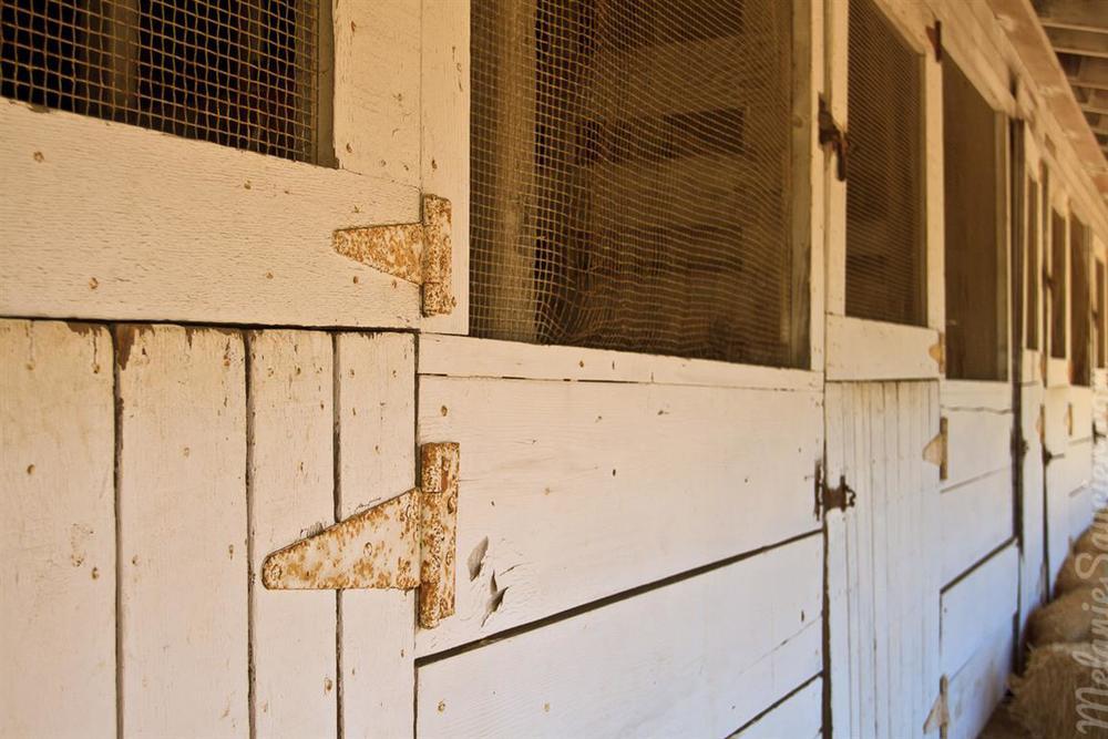 Carrillo_Ranch-16 (Medium).jpg