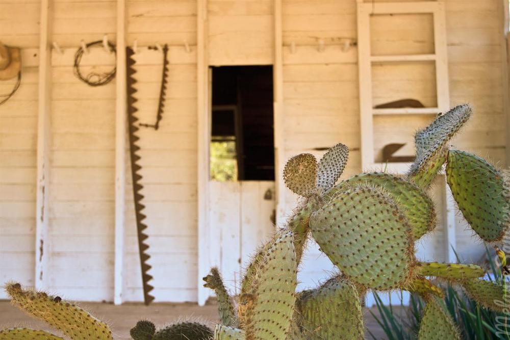 Carrillo_Ranch-12 (Medium).jpg