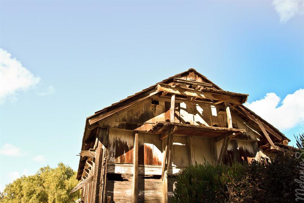 Carrillo_Ranch-22 (Medium).jpg