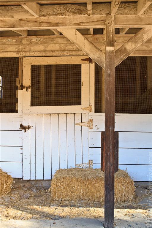 Carrillo_Ranch-15 (Medium).jpg